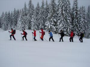 Tages-Schneeschuhwanderung @ Bödele