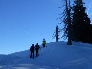 Schneeschuh Tageswanderung @ Je nach Schnee- und Wetterlage. Vom Großraum Pfänderstock bis Bregenzerwald