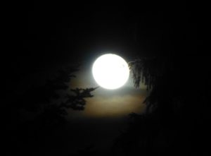 Mondschein Schneeschuhwanderung @ Je nach Schnee- und Wetterlage. Vom Großraum Pfänderstock bis Bregenzerwald