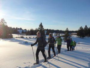 Tages-Schneeschuhwanderung @ Möggers