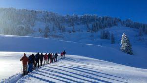 Tages-Schneeschuhwanderung @ Balderschwang